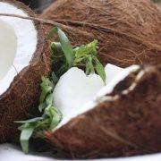 split-coconuts